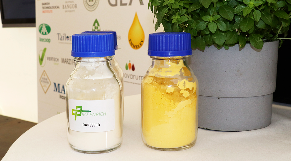 Rapsolie, protein. bæredygtighed, fødevarer